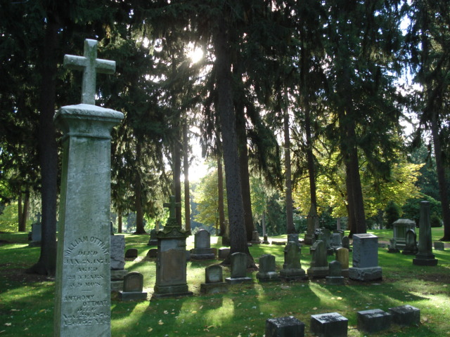 A creepy and beautiful morning in Holy Sepulchre Cemetery.