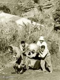 Men recovering a typical giant skull.